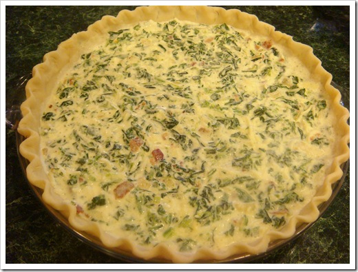 Create your own quiche no empty chairs for Quiche not setting