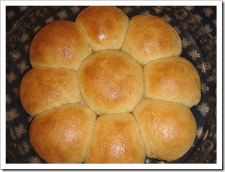 Thanksgiving: White or Whole Wheat Dinner Rolls | No Empty ...