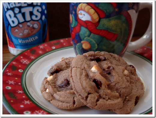 Hot Cocoa Cookies2