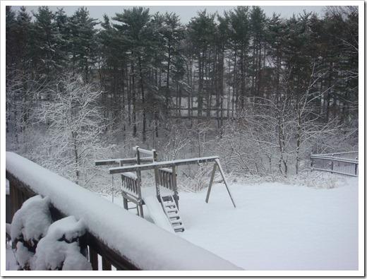 Spring Snow 3-25-13 (2)