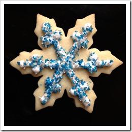 Frozen Snowflake Sugar Cookies 1