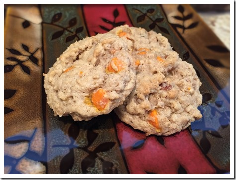 Oatmeal Pumpkin Chip Cookies 3