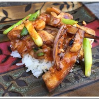 Chinese Chicken & Eggplant in Garlic Chili Sauce