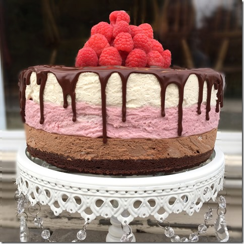 Chocolate Raspberry Vanilla Mousse Cake 5