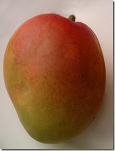 Haden Mango