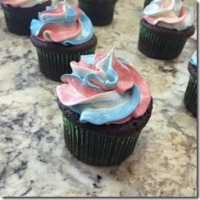 Chocolate Butterfly Cupcakes 11