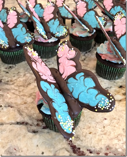 Chocolate Butterfly Cupcakes 14